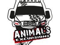 animals excursions tour